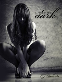 Captive in the Dark (The Dark Duet Series) by CJ Roberts