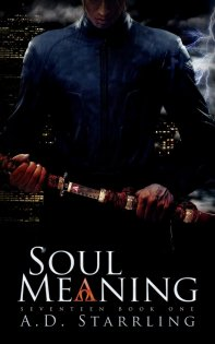 Soul Meaning (Seventeen Series) by AD Starrling